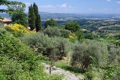 Tuscan plats Arkivfoto