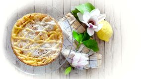 Tuscan Ricotta Cake. Slice of cake with ricotta, shortbread pastry and pine nuts with lemon flavor stock footage