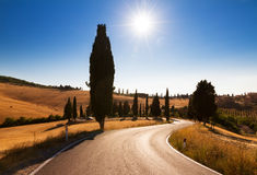 Tuscan road Stock Photography