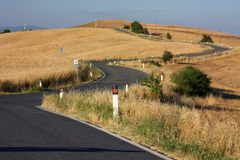 Tuscan road. A typical road in the Tuscan countryside Royalty Free Stock Photos