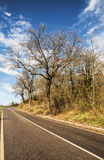 Tuscan road Royalty Free Stock Image