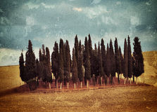 Tuscan rural landscape Royalty Free Stock Photo