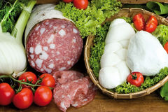 Tuscan salami, buffalo mozzarella of Campania with salad, fennel Royalty Free Stock Photos