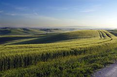 Tuscan scenery. A nice view of italian landscape Royalty Free Stock Photography