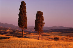 Tuscan scenic Royalty Free Stock Image