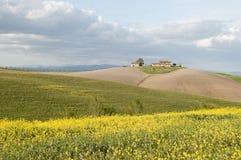 Tuscan spring Royalty Free Stock Image