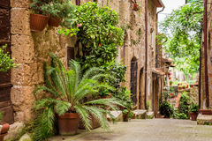 Tuscan Street in the city full of flowery porches Royalty Free Stock Image