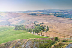 Tuscan summer on the fields in the beautiful view Stock Image
