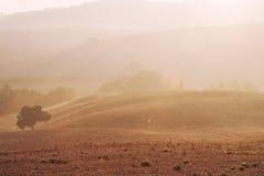 Tuscan sunrise. Typical Italian foggy sunrise somewhere in Tuscan Stock Images