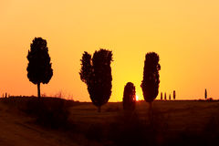 Tuscan Sunset. Sunset in the Orcia Valley, Tuscany Stock Photos