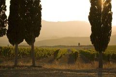 Tuscan sunset Stock Image