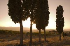 Tuscan sunset Royalty Free Stock Photos