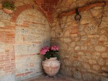 Tuscan terracotta flower pot Stock Images