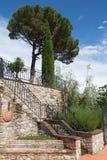 Tuscan trädgårdtrappuppgång Royaltyfria Foton