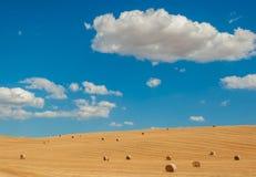 Tuscan typowy krajobraz Obraz Royalty Free