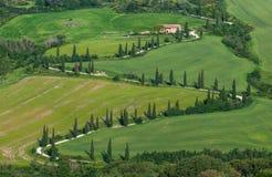 Tuscan typowy krajobraz Zdjęcia Royalty Free