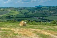 Tuscan typowy krajobraz Obrazy Royalty Free