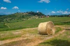 Tuscan typowy krajobraz Fotografia Stock