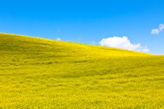 Tuscan Val d'Orcia background Royalty Free Stock Photos