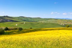 Tuscan Val d'Orcia view Royalty Free Stock Photos