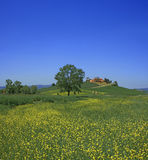Tuscan view Royalty Free Stock Images