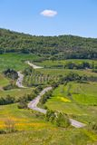 Tuscan view with local curve road Royalty Free Stock Image