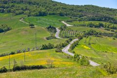 Tuscan view with local curve road Royalty Free Stock Images