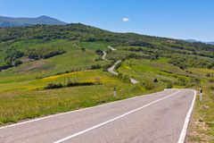 Tuscan view with local curve road Royalty Free Stock Photo