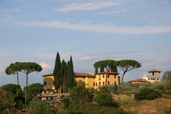 Tuscan villa. Villa in tuscany with stone-pines Royalty Free Stock Photos