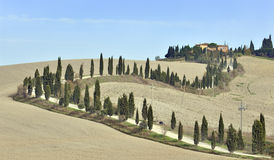 Tuscan villa and cypress trees. La Crete, Tuscany Stock Photos
