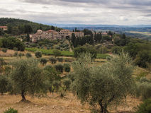 Tuscan villa among olive trees. A sprawling villa set in a Tuscan landscape among olive trees and hills Royalty Free Stock Photography