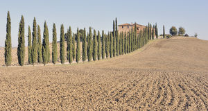 Tuscan villa and tree-lined road. Among plowed farmland, Italy Stock Photography