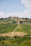 Tuscan village and vineyard Royalty Free Stock Photography