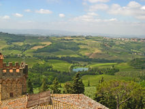 Tuscan Vineyards & Olive Groves 02 stock image