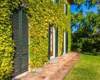Tuscan vinodling Arkivfoton