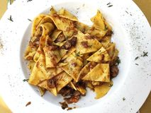 Tuscan wild boar pappardelle. & x28;wide strip of pasta& x29 stock photography
