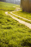 Tuscan winding road stock images