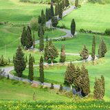 Tuscana Landscape - road serpentines Royalty Free Stock Photos