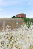 Tuscanf Farm Stock Image