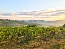 tuscani krajobraz Fotografia Royalty Free