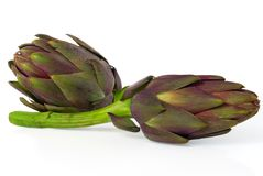 Tuscanian Artichokes Royalty Free Stock Photo