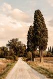 tuscany immagine stock libera da diritti