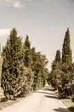 tuscany fotografie stock