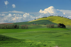 Tuscany. A view of the Palouse from Steptoe Butte Stock Photography