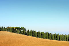 Tuscany Royalty Free Stock Images