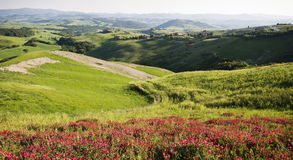 Tuscany Royalty Free Stock Photography
