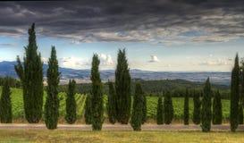 Free Tuscany Stock Photo - 20696290