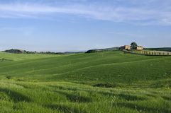 Tuscany. A nice view of tuscany landscape Royalty Free Stock Photo