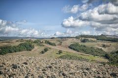tuscany Photographie stock libre de droits