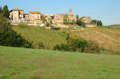 Tuscany. Small village with vineyard in Tuscany Stock Photo